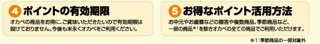 (4)ポイントの有効期限、(5)お得なポイント活用方法
